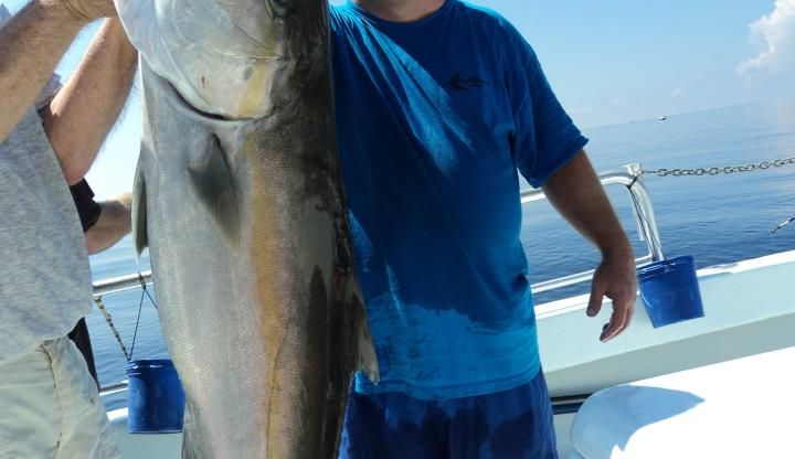 What to Know About Catching Amberjack